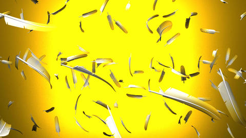 Yellow Feathers On Yellow Background Stock Video Footage
