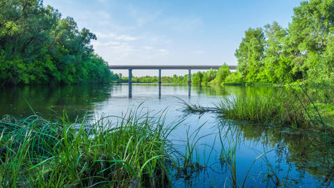 the river flows under the bridge a sunny summer day nature tour timelapse Footage
