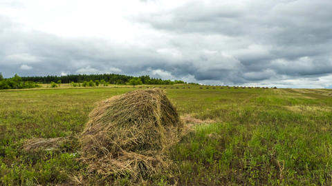 haystack in the field of clouds in the sky, farmers cleaning hay harvest Footage