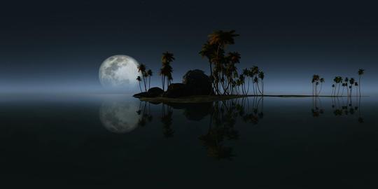 360 rocky island palms beach moon 264 2 VR 360° 動画
