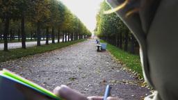 Plein air at autumn alley in park Footage
