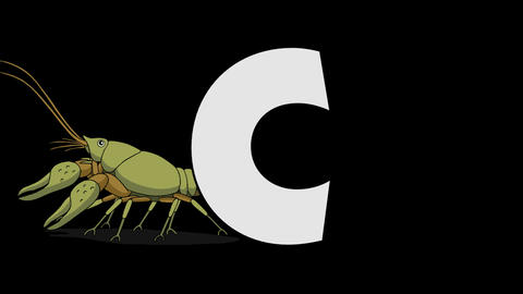 Letter C and Crayfish (background) Animation