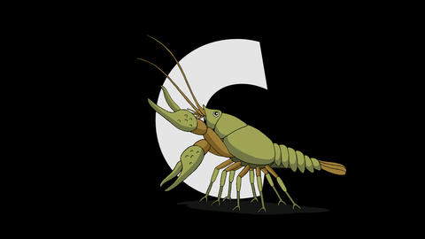 Letter C and Crayfish (foreground) Animation
