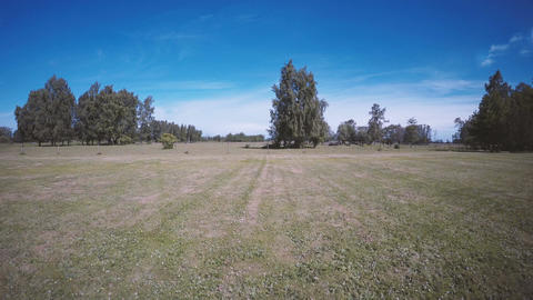 Landscape background with green meadow in Sweden Footage