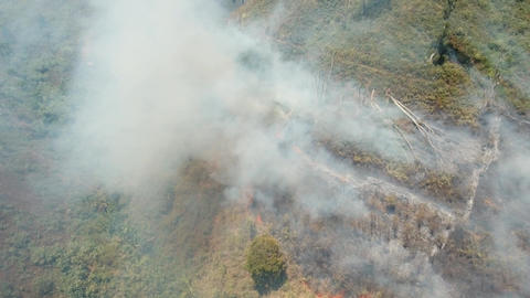 Aerial view Forest fire. Jawa island, Indonesia Footage