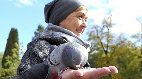 A smiling woman feeds doves on a sunny square in slo-mo Footage