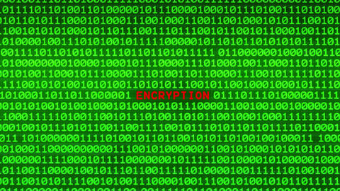 ENCRYPTION Revealing in Wall of Green Binary Code Binary Data Matrix Background Animation