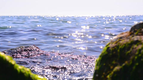 The seascape Footage