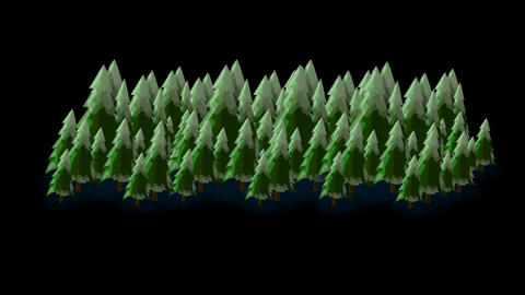 Pine Trees Footage 3 Alpha Channel Animation