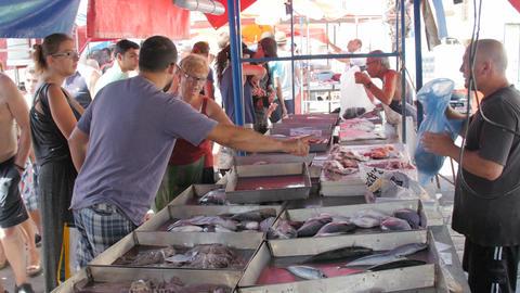 Marsaxlokk Village, Malta, July 6, 2016. Fresh Fish Market in the village, with Live Action