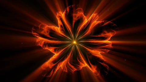 Burning orange fiery flower with rays of light Animation