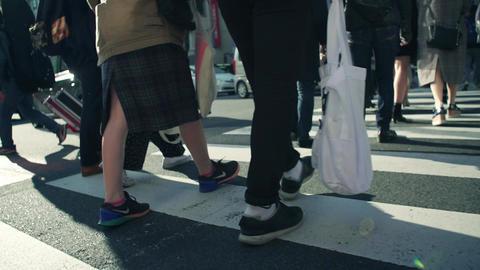 intersection, walking, traffic jam, Office worker, Businessman, Attendance, ライブ動画