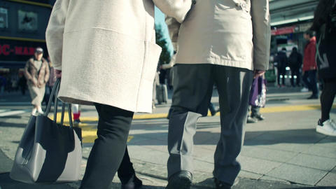 people, old, senior, walking, group, happy, park, elderly, couple, seniors, Footage