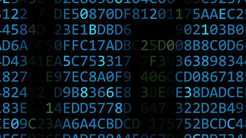 Intel Corporation logo made of flashing hexadecimal symbols on computer screen Footage
