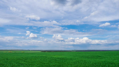 green field and cloudy sky beautiful clouds floating over green bright sky Footage