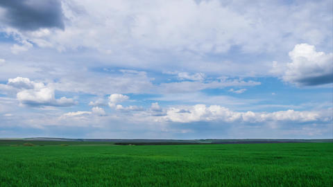 green field and cloudy sky beautiful clouds floating over… Stock Video Footage