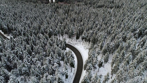 Road through a snow-covered forest Footage