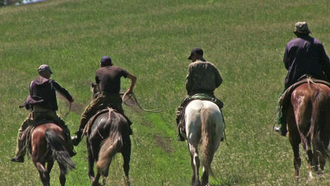 Four Men Ride Horses Footage