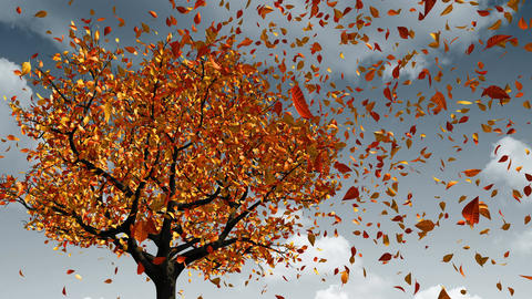 Concept Of Changing Of The Seasons From Spring To Autumn. Leaves Appear On The Bild