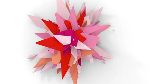 4K. Abstract Digital Flower. Version With Pink, White And Red Colors. Seamless Looped GIF