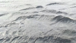 gloomy, dark waves and strong wind Footage