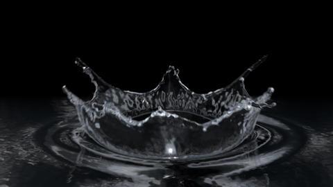 Water drop making splash on black background in slow motion Animation