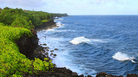 Shoreline Of Hawaii Live Action