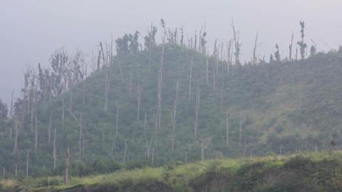 mount merapi volcano, indonesia Stock Video Footage