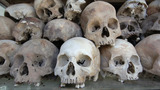 Skulls And Bones In Killing Field stock footage