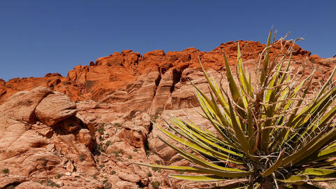 Valley of Fire National Park, Nevada Footage