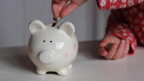 Piggy Bank Euros 0