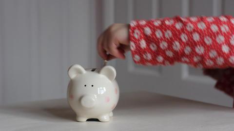 Piggy Bank Euros 1