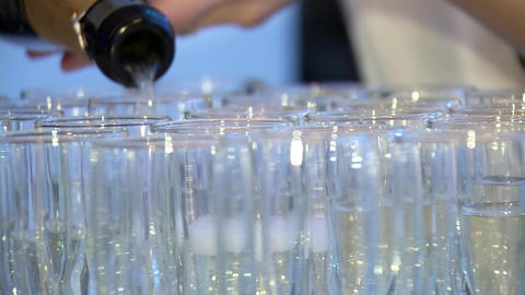 pouring champagne into glasses Footage