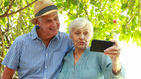 Senior couple using smartphone Live Action