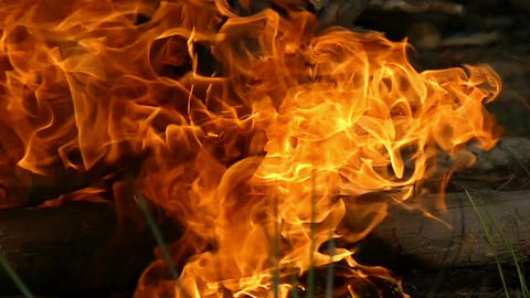 Forks of a red and yellow flame on a campfire in the evening at slow motion Footage