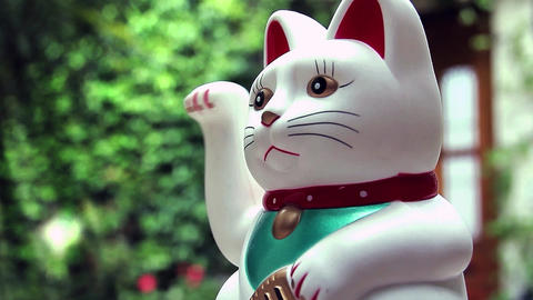 Maneki-Neko Cat Footage
