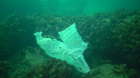 Plastic garbage and other debris floating underwater. Marine pollution. Plastic debris in the water, Live Action