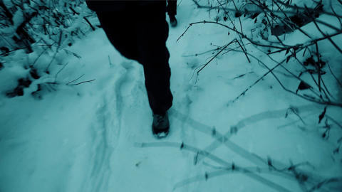 Man and woman hiking in winter forest. Steadicam shot 画像