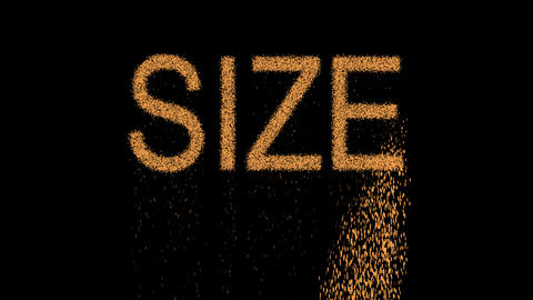 text SIZE appears from the sand, then crumbles. Alpha channel Premultiplied - Animation
