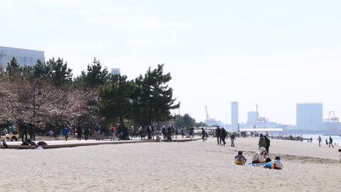 Spring arrival in Tokyo, and crowd gathering at the beach in Odaiba Footage