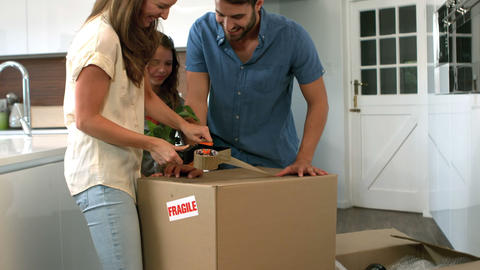 Lively family packing boxes Footage