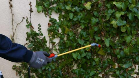 Man doing pest control Live Action