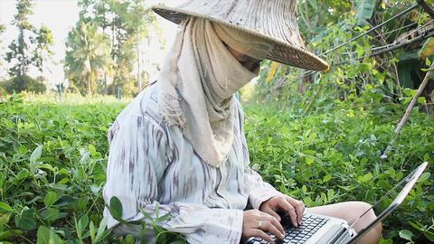4K Farmer using laptop computer in the farm Image