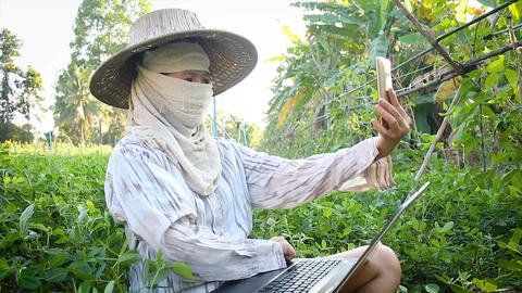4K Farmer using smartphone and laptop computer to video conference and chat Footage