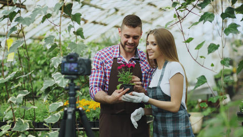 Young smiling blogger couple gardeners in apron holding flower talking and フォト