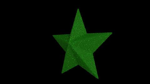 Ornament star green Animation