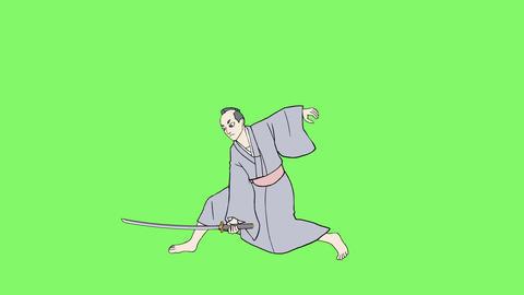 Japan Costume 2 0