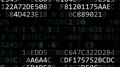PERSONAL DATA words made of hexadecimal symbols on computer screen Footage
