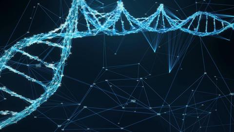 Motion Background Plexus DNA molecule random digits Loop Animation