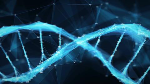 Motion Background Digital Polygon Plexus DNA molecule random digits Loop Animation